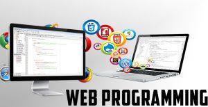 Webmaster Programming in ATX